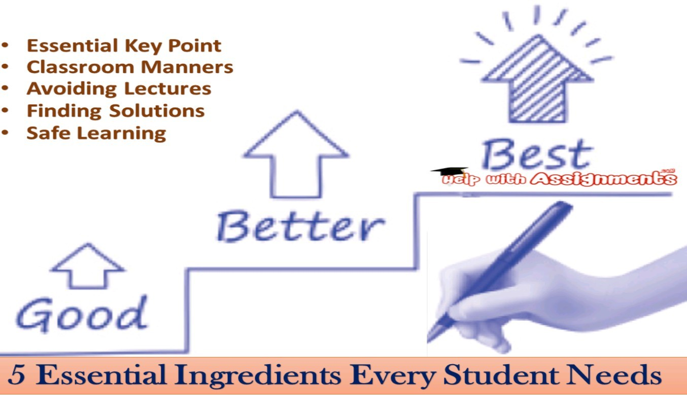 5 Essential Ingredients Every Student Needs